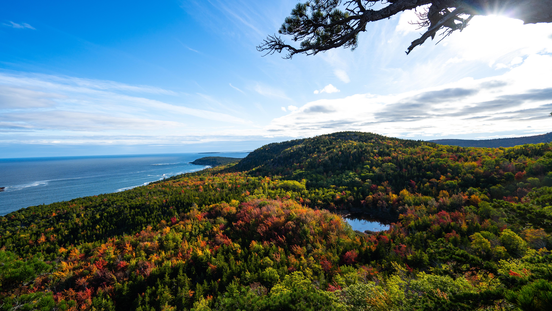 Vue panoramique du parc d'Acadie